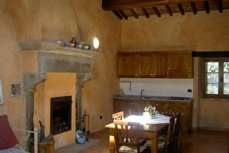 Colonnellihouse-vecchio camino - Appartement