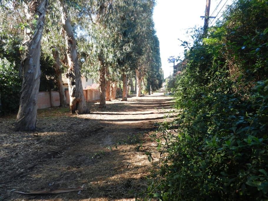 Direct gate access to the La Selva jogging trail!