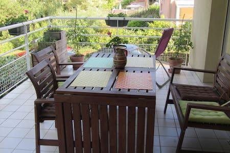 grand appartement 2 pièces avec terrasse - Wohnung