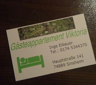 Gästeappartement Viktoria - Sinsheim - Apartment