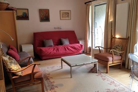 Charming studio near lake - Thollon-les-Mémises - Appartamento