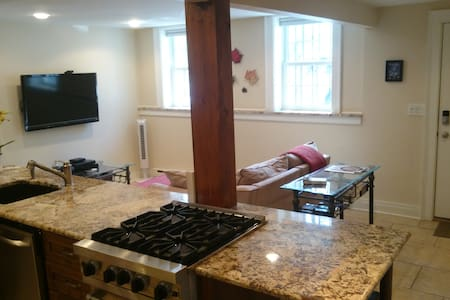 Luxury Apt. in Perfect Location - Albany