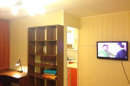 Уютная однокомнатная квартира в центре города - Apartment