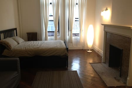 Beautiful apartment  Crown Heights