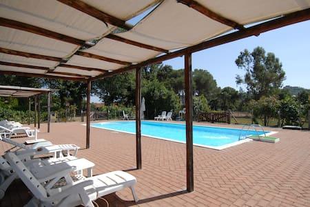 Loft in farmhouse - swimming pool - Collevecchio - Apartment