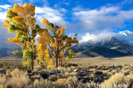 Fall Special in Eastern Sierra Nevada - Ház