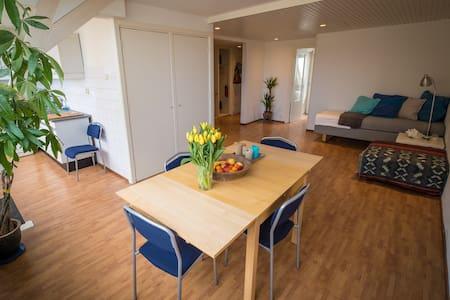 Apartment near City,Beach & Museums - Den Haag - Daire