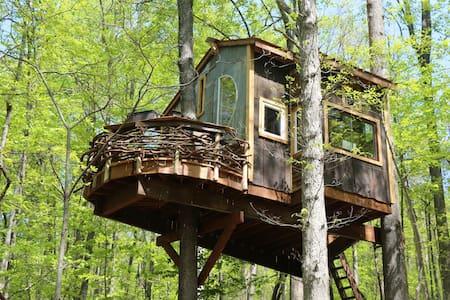 Trillium Treehouse - Linden - Cabane dans les arbres