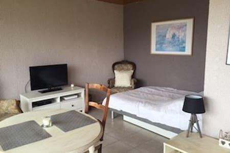 Charmant studio meublé dans quartier calme - Divonne-les-Bains - Lägenhet