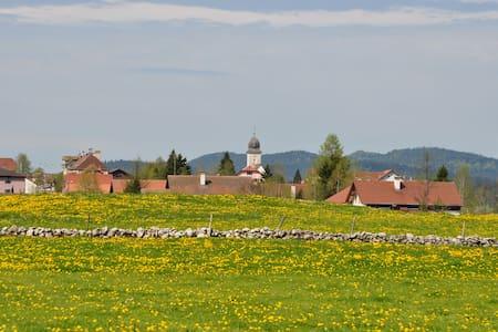 La Drosera, vallée  de la Brėvine - Talo