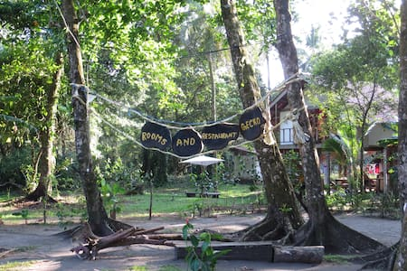 Gecko de Tortuguero - Bed & Breakfast