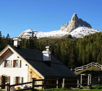 Malga Federa, mountain hut- in the Dolomites heart - Inap sarapan