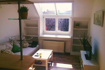 Cosy attic near Prague Castle - Apartment