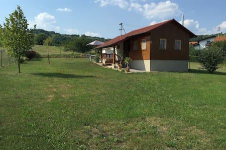 Komfort-Holzhaus direkt im Weingarten - Eisenberg an der Pinka - Casa