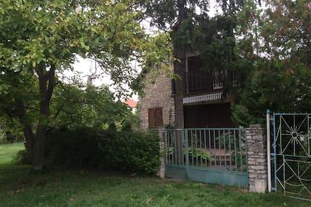 Kenesi álom nyaralás - Huis