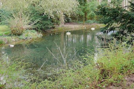 Villa Kükenkamp - Gästehäuschen - Rätzlingen