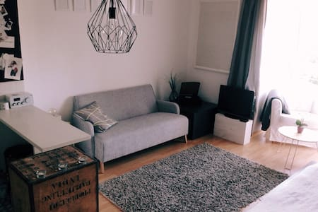 Kleine gemütliche 1-Zimmer-Wohnung - Apartment