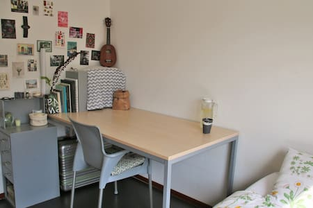 Homey comfort 5mins walking to station and center - Appartement