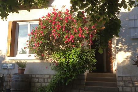 Chambre individuelle dans maison avec jardin - Dům