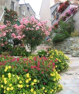 LOCATION DE VACANCES HAUTE-CORSE - Murato - House