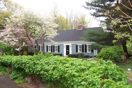 Charming Wellesley Cape full of Art - House