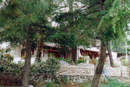 Holiday House Infreschi Bay - Marina di Camerota - House