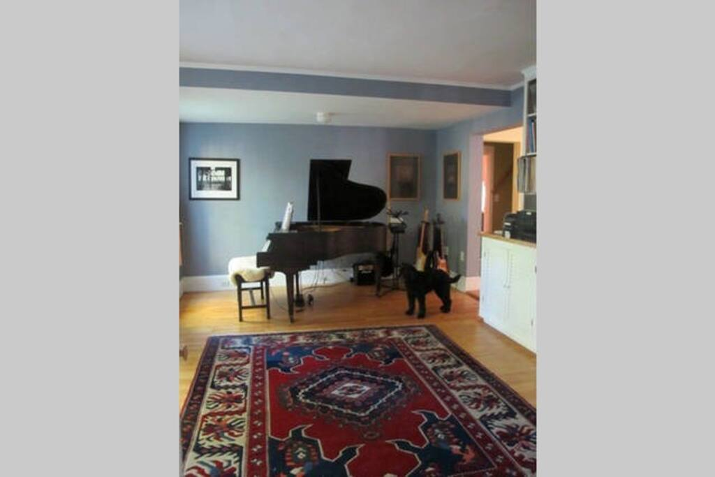 Shared music room /library