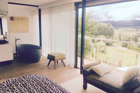 Leman Lake Amazing View DesignHouse - Massongy - Villa
