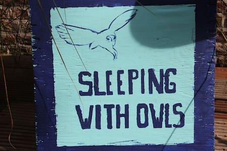 "LOGIES : OKSDONK  ""Sleeping with owls"" - Kapelle-op-den-Bos"