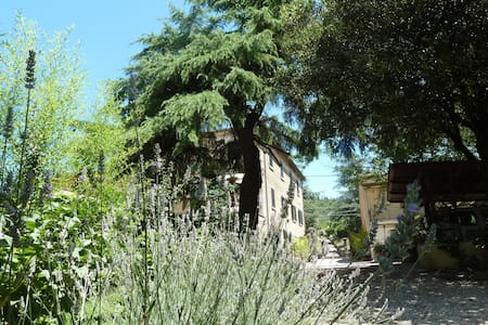 B&B Gabri - Stanza Papavero - Bed & Breakfast