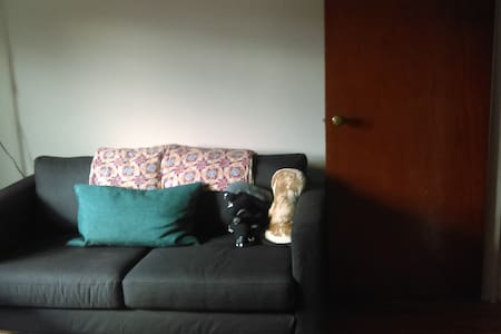 Big bright bedroom with desk available in Astoria! - Queens - Apartment