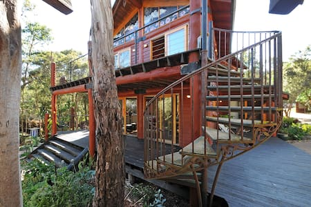 ECO Tree House - House