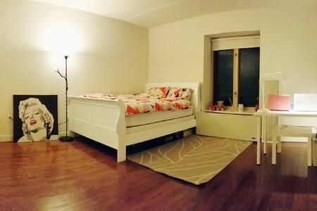 Perfect Private master room , LIC - Queens - Apartment