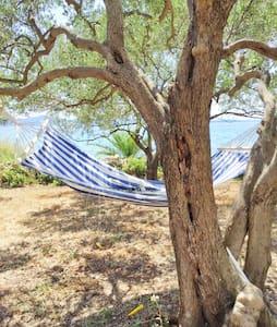 Beach House - First Row to the Sea - Zadar - House