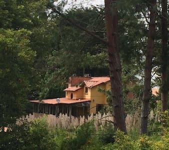 Creativeland - Santa Elena - Bed & Breakfast