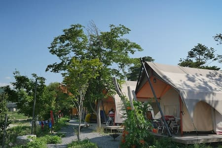 Pine tree camping- Standard tent/ 파인트리글램핑 - Tent