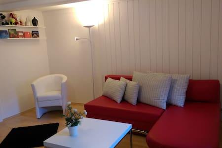 Erholung im Winzerhaus - Apartamento