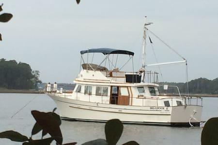 Pristine 36ft trawler teak interior - Southport - Boot