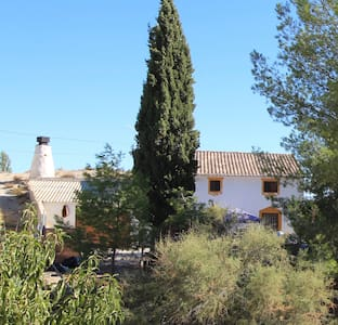 Bed & Breakfast in large cave house, near Baza. - Puente Arriba