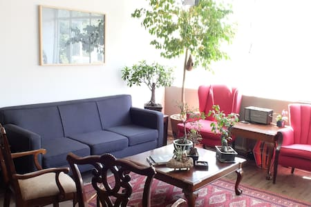 Is in the heart of La Condesa, near all night life, restaurants, walking distance to the parks, etc.  Is a three apartment walk up. The room has a bed, tv, half closet, and a futon if you would like to come with an extra person. Bathroom is shared.