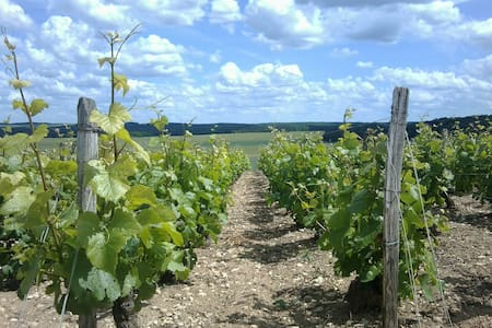 La Vineyard - Bragelogne - Guesthouse