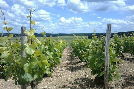 La Vineyard - Guesthouse