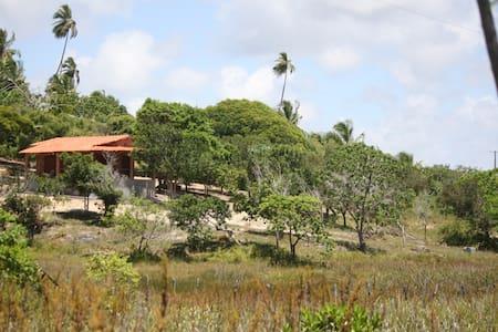 Chalé na Praia Paradisíaca de Massarandupió, Bahia - Massarandupio