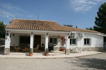 Olive Villa, Ontinyent, Spain. - Valence - Maison