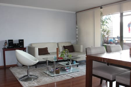 Spacious and warm place, 2 rooms. - Santiago - Apartment