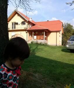 Cvijovic - Ház
