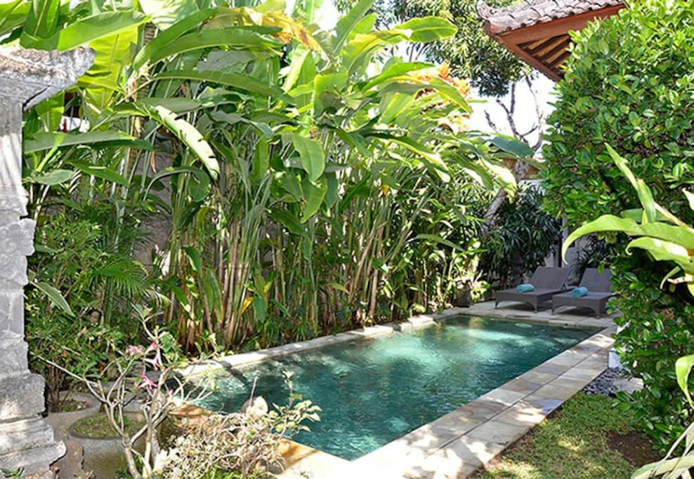 The garden is tropical with heliconias and mango trees.