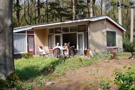 Vakantiebungalow in bos Gaasterland - Cabin