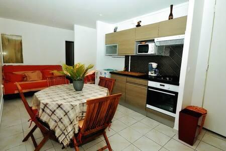 Kassav studio - Apartment