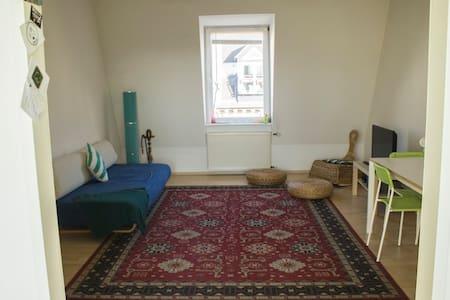 Sunny Room in Berlin! - Berlin - Bed & Breakfast